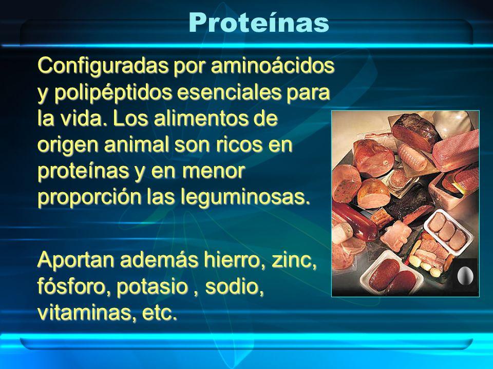 Proteínas Configuradas por aminoácidos y polipéptidos esenciales para la vida. Los alimentos de origen animal son ricos en proteínas y en menor propor