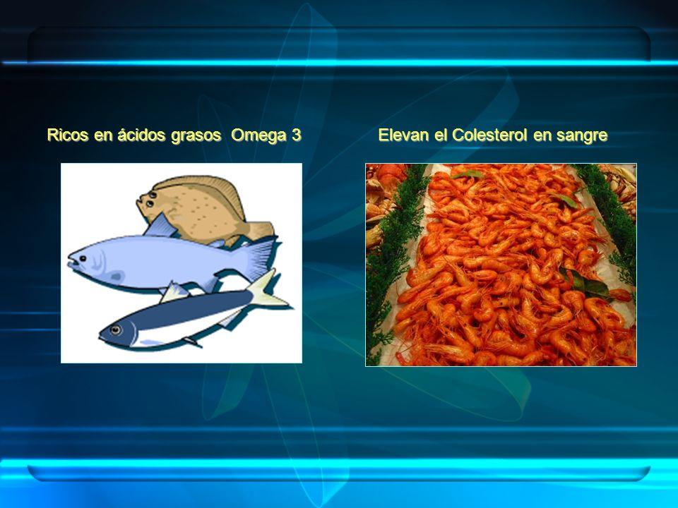 Ricos en ácidos grasos Omega 3 Elevan el Colesterol en sangre
