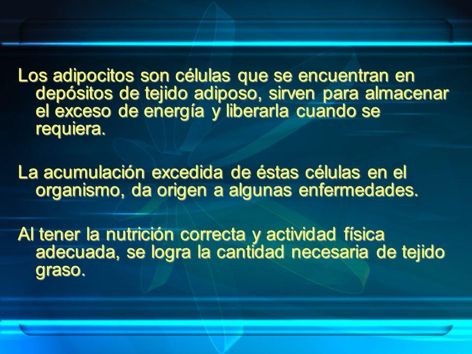 POR TU SALUD Y POR UNA MEJOR CALIDAD DE VIDA ¡ CUIDA TU ALIMENTACIÓN Y PRACTICA EJERCICIO!