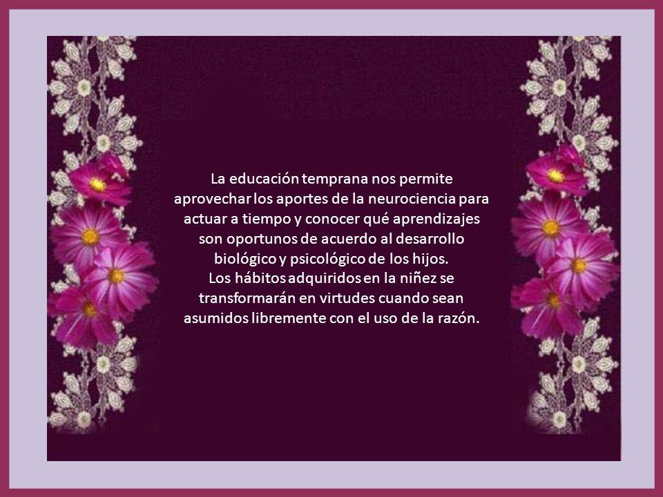LA EDUCACIÓN PREVENTIVA Llegar antes. Darles criterios para que elijan el bien y aprendan a amar la verdad. La educación preventiva busca llegar antes