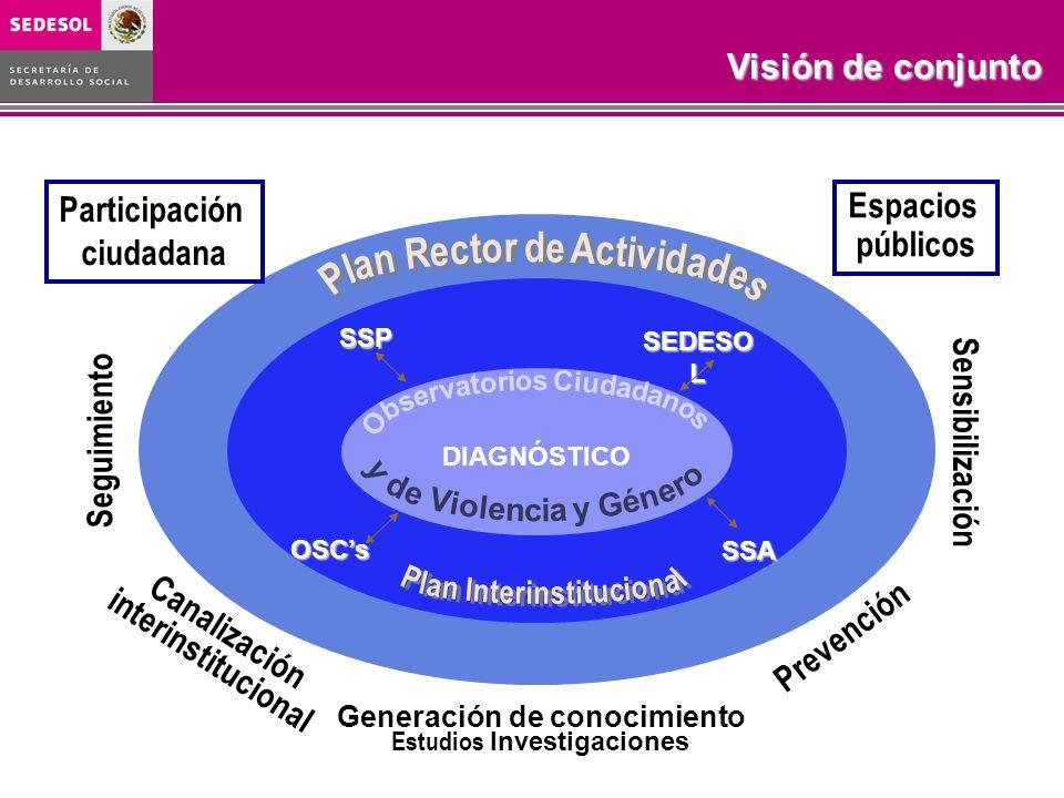 Visión de conjunto Participación ciudadana Espacios públicos Canalización interinstitucional Generación de conocimiento Estudios Investigaciones SSA S
