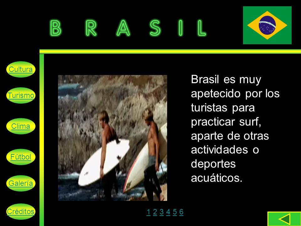 Brasil es muy apetecido por los turistas para practicar surf, aparte de otras actividades o deportes acuáticos.