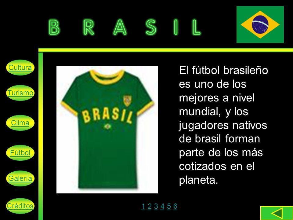 El fútbol brasileño es uno de los mejores a nivel mundial, y los jugadores nativos de brasil forman parte de los más cotizados en el planeta.