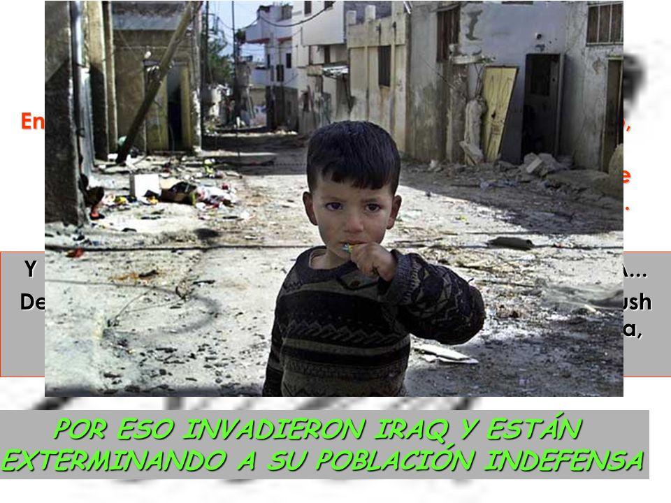 Últimas consideraciones El modo más fácil de conseguir petróleo era declarar la guerra a Iraq e instaurar un gobierno de paja (El de Saddam Husseim), que dependa Directamente de Estados Unidos.