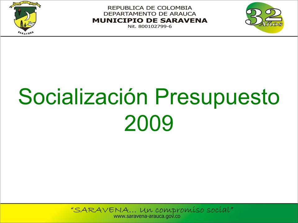 Socialización Presupuesto 2009