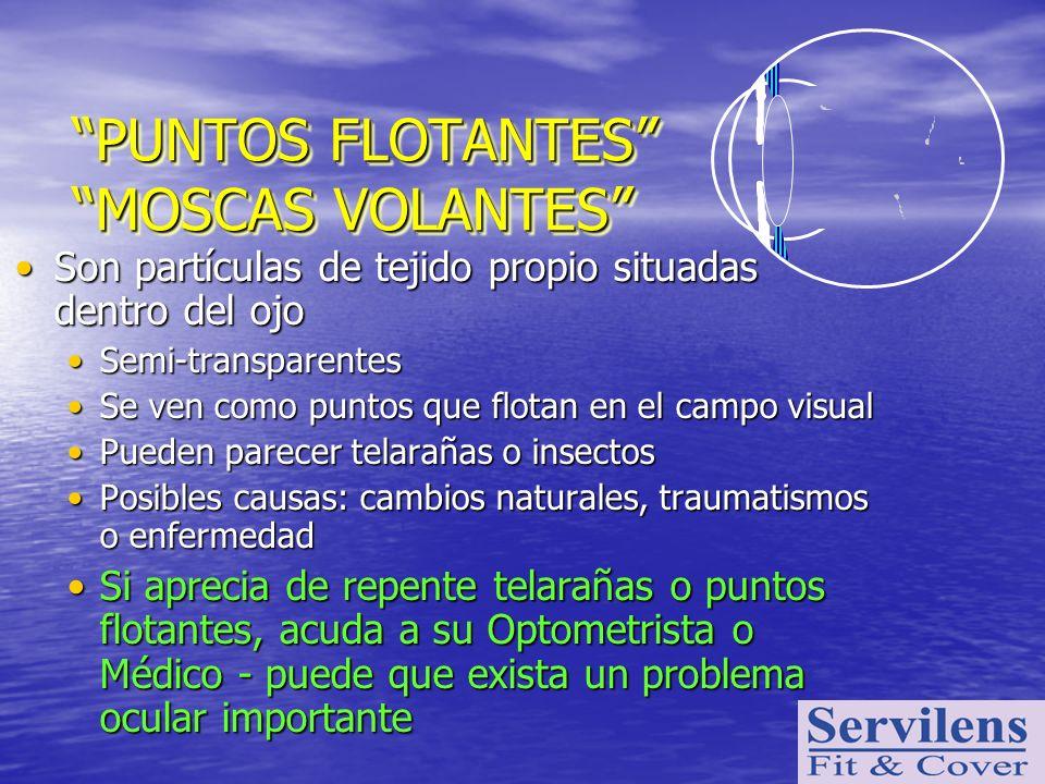 PUNTOS FLOTANTES MOSCAS VOLANTES Son partículas de tejido propio situadas dentro del ojoSon partículas de tejido propio situadas dentro del ojo Semi-t