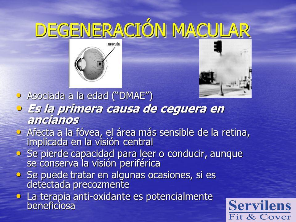DEGENERACIÓN MACULAR Asociada a la edad (DMAE) Asociada a la edad (DMAE) Es la primera causa de ceguera en ancianos Es la primera causa de ceguera en