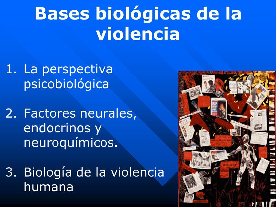Bases biológicas de la violencia 1. 1.La perspectiva psicobiológica 2. 2.Factores neurales, endocrinos y neuroquímicos. 3. 3.Biología de la violencia