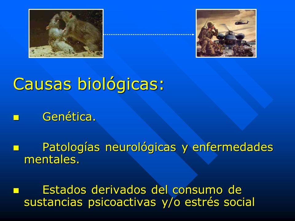 Causas biológicas: Genética. Genética. Patologías neurológicas y enfermedades mentales. Patologías neurológicas y enfermedades mentales. Estados deriv