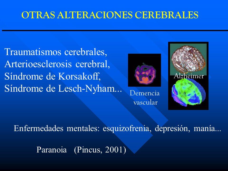 OTRAS ALTERACIONES CEREBRALES Alzheimer Demencia vascular Traumatismos cerebrales, Arterioesclerosis cerebral, Síndrome de Korsakoff, Síndrome de Lesc