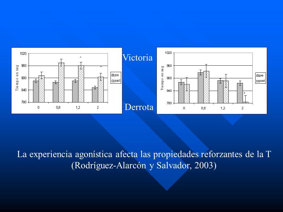 La experiencia agonística afecta las propiedades reforzantes de la T (Rodríguez-Alarcón y Salvador, 2003) Victoria Derrota