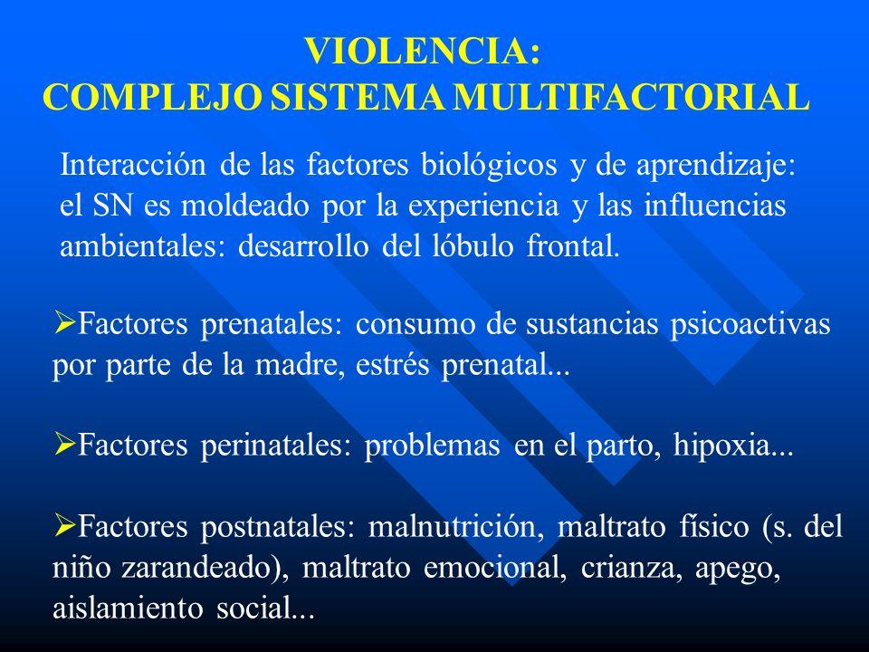 Factores prenatales: consumo de sustancias psicoactivas por parte de la madre, estrés prenatal... Factores perinatales: problemas en el parto, hipoxia