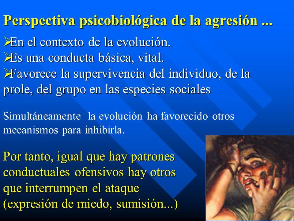 En el contexto de la evolución. En el contexto de la evolución. Es una conducta básica, vital. Es una conducta básica, vital. Favorece la supervivenci