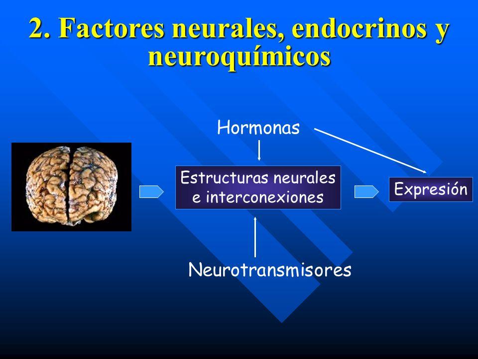2. Factores neurales, endocrinos y neuroquímicos Expresión Estructuras neurales e interconexiones Hormonas Neurotransmisores