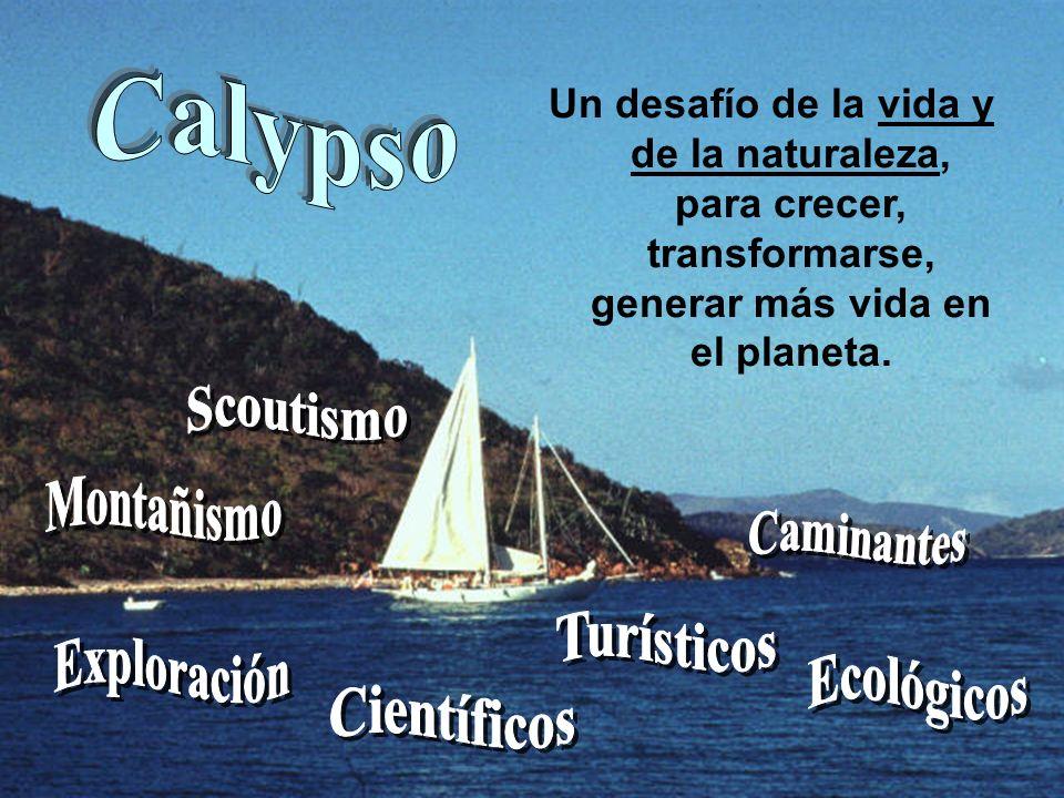 MACRO PROYECTO CALYPSO