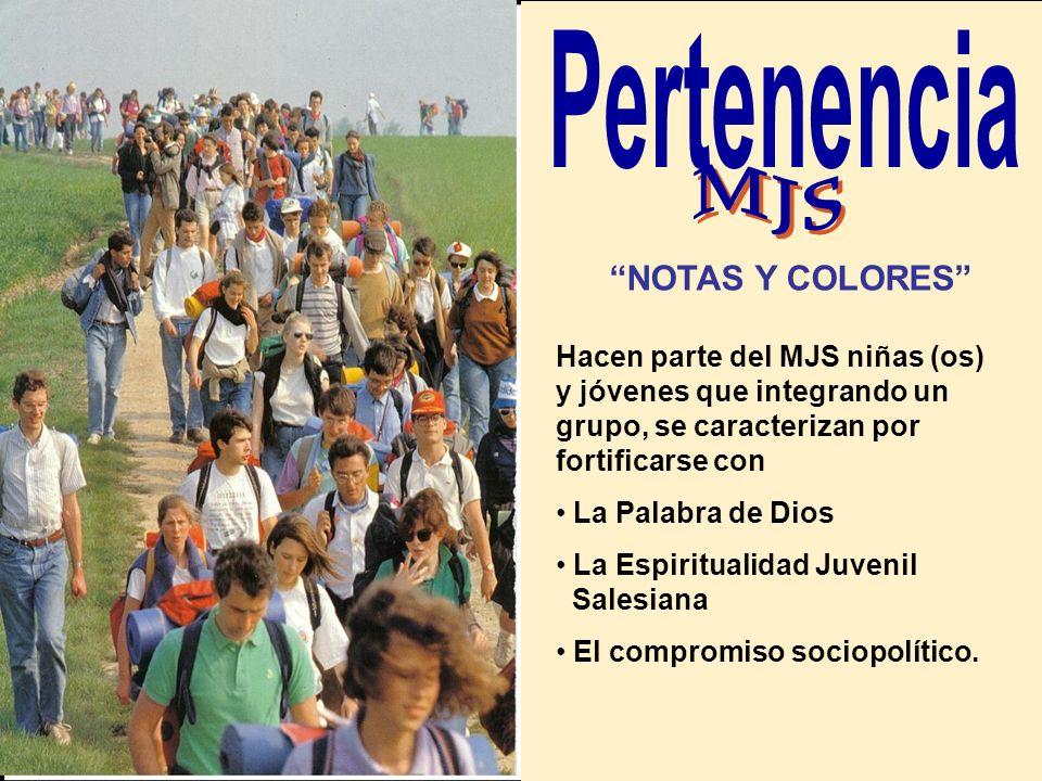 - EL GRUPO como lugar privilegiado de educación total y de experiencia de Iglesia, abierto al compartir y a la solidaridad. - LA REALIDAD COTIDIANA co