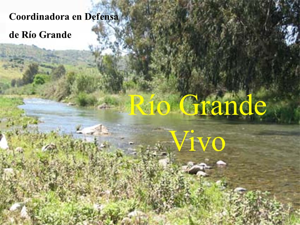 Río Grande Vivo Coordinadora en Defensa de Río Grande