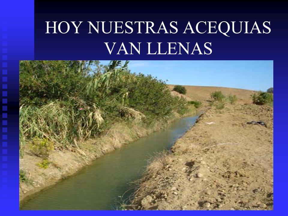 HOY NUESTRAS ACEQUIAS VAN LLENAS