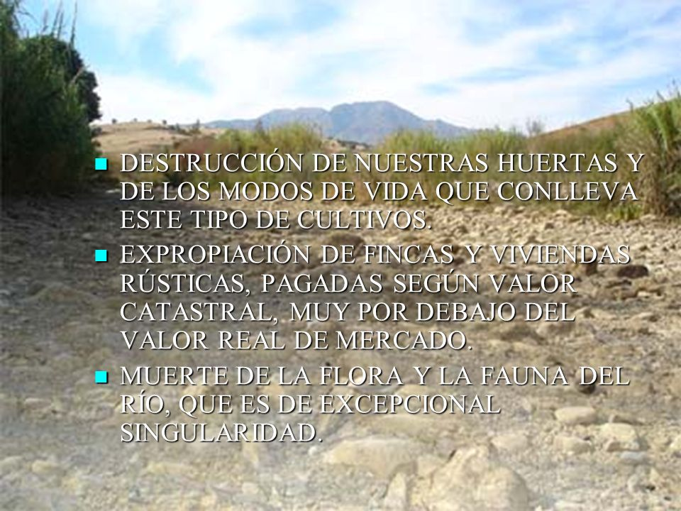 DESTRUCCIÓN DE NUESTRAS HUERTAS Y DE LOS MODOS DE VIDA QUE CONLLEVA ESTE TIPO DE CULTIVOS.
