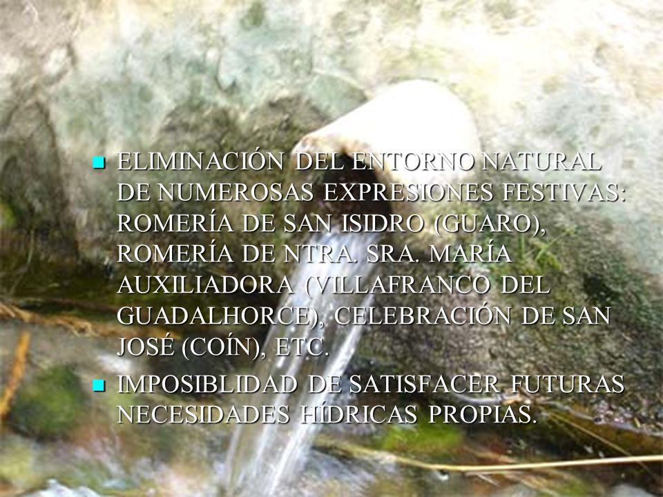 ELIMINACIÓN DEL ENTORNO NATURAL DE NUMEROSAS EXPRESIONES FESTIVAS: ROMERÍA DE SAN ISIDRO (GUARO), ROMERÍA DE NTRA.