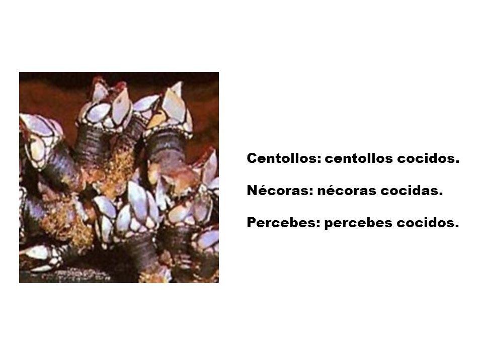 GASTRONOMÍA La cocina gallega es muy elaborada. Algunos platos típicos gallegos son: Caldo gallego: verdura cocida con grasa rancia. Cocido gallego: c