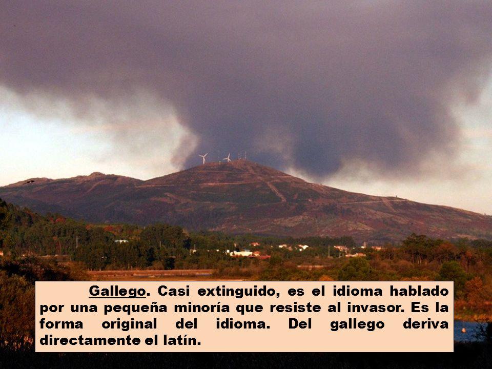 EL IDIOMA En Galicia conviven en perfecta armonía siete lenguas romances: el gallego, el castellano, el castrapo, el chapurrao, el xunteiro, el portuj