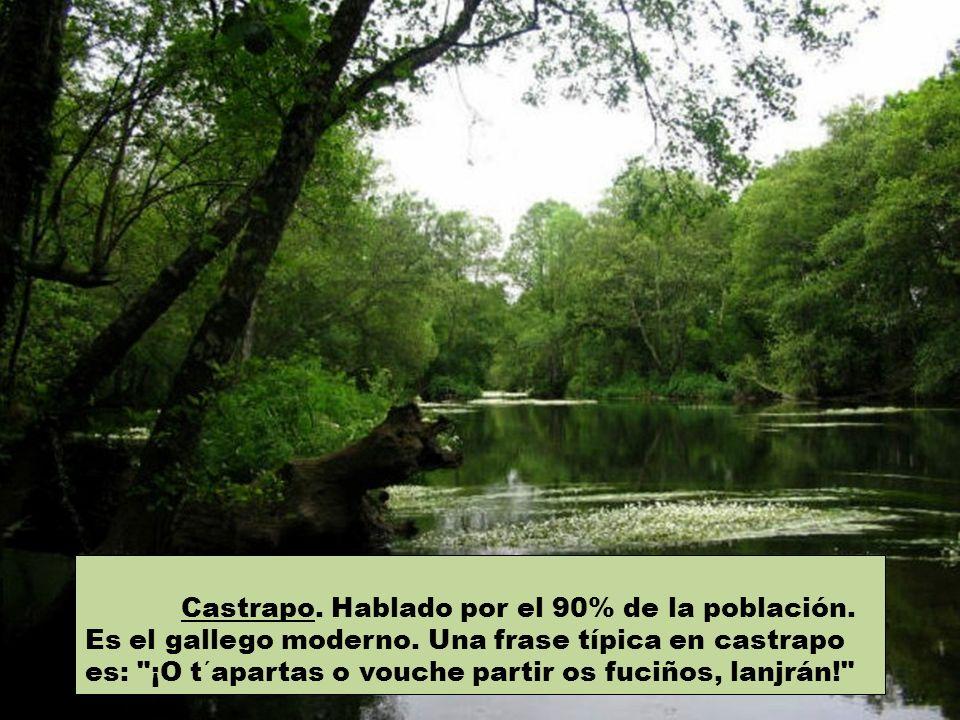 Castellano. Hablado por los vallisoletanos aclimatados a Galicia. Palabras castellanas son colo (regazo) y reseso (pan viejo reblandecido por la humed