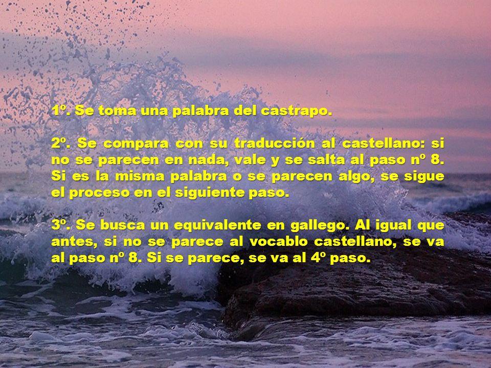 Esta lengua, en permanente proceso de transformación, es destilada y sintetizada en los laboratorios ultrasecretos de la Xunta de Galicia a partir del