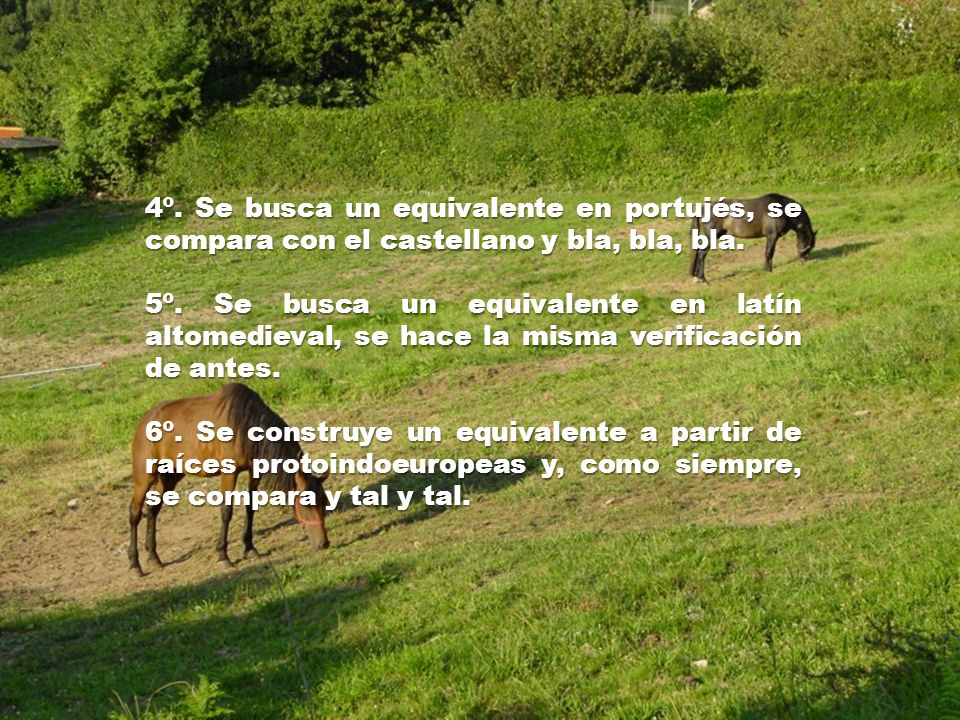 1º. Se toma una palabra del castrapo. 2º. Se compara con su traducción al castellano: si no se parecen en nada, vale y se salta al paso nº 8. Si es la