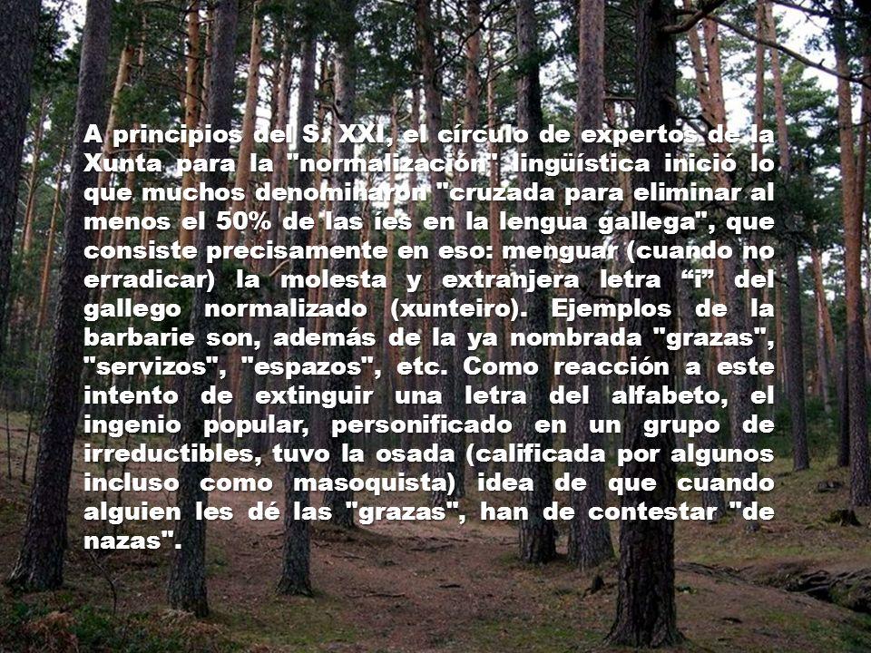 10º. Una vez aceptada, se difunde a través de los medios de comunicación de la Xunta (TVG y Radio Galega), de los escritos y publicaciones oficiales y