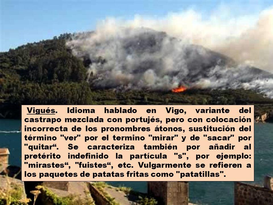 Portujés. Idioma hablado en algunas de las provincias externas de Galicia, como Portugal, Brasil y Angola.