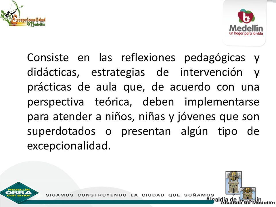 Consiste en las reflexiones pedagógicas y didácticas, estrategias de intervención y prácticas de aula que, de acuerdo con una perspectiva teórica, deb