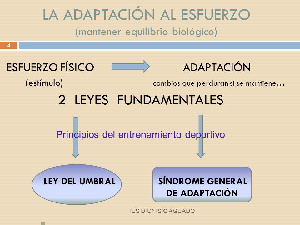 LEY DEL UMBRAL: Adaptación óptima: asimilación estímulos óptimos según la capacidad 5 IES DIONISIO AGUADO Zona de entrenamiento
