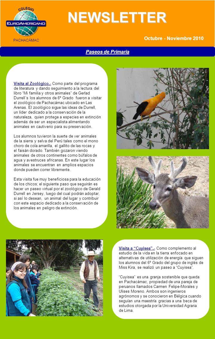 >> Boletín / Agosto 2010 NEWSLETTER Paseos de Primaria A su regreso al Perú, Carmen y Ulises, compraron una parcela en Casablanca (Pachacámac) y establecieron lo que es hoyCuyisea.