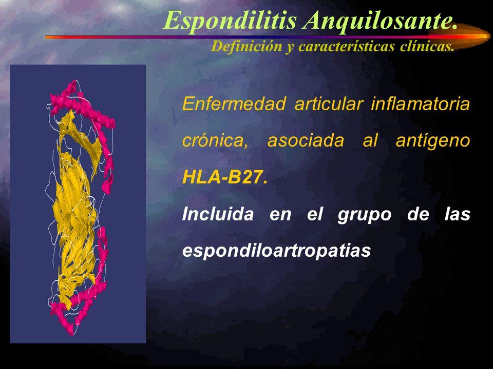 Espondilitis Anquilosante. Definición y características clínicas. Enfermedad articular inflamatoria crónica, asociada al antígeno HLA-B27. Incluida en
