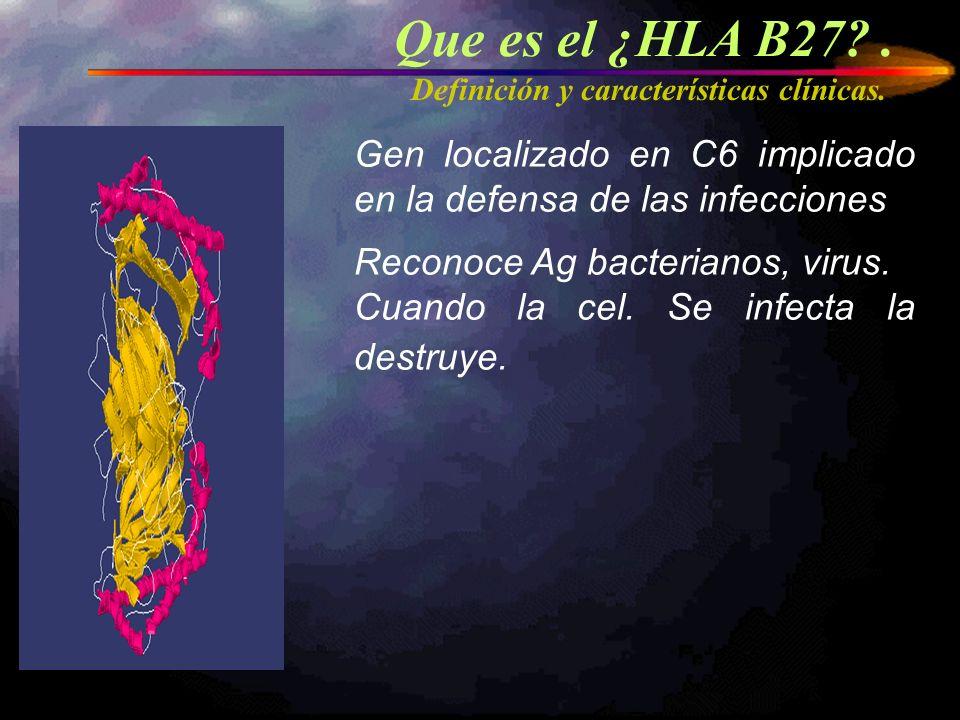 Que es el ¿HLA B27?. Definición y características clínicas. Gen localizado en C6 implicado en la defensa de las infecciones Reconoce Ag bacterianos, v