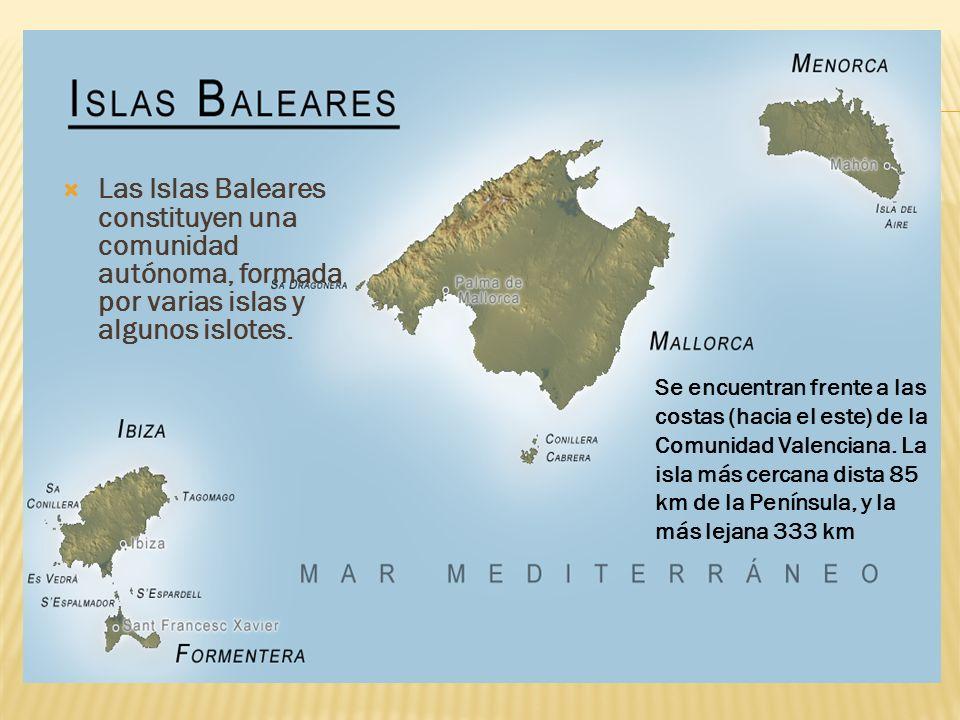 ACTIVIDADES CULTURALES : EL MUSEO DE MALLORCA El día podeis disfrutar del famoso museo de Mallorca.