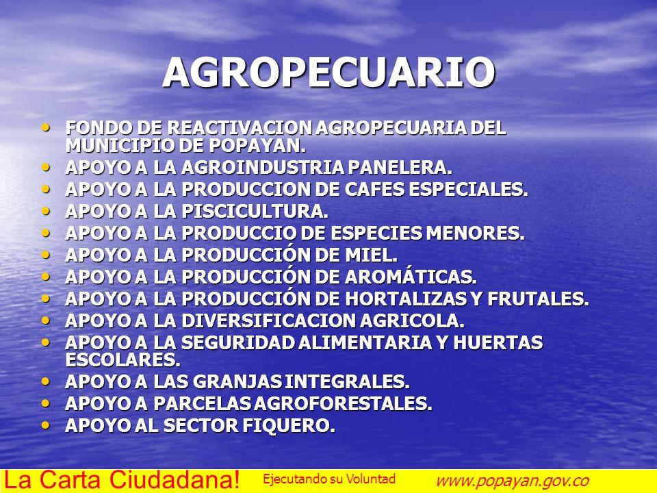 AGROPECUARIO FONDO DE REACTIVACION AGROPECUARIA DEL MUNICIPIO DE POPAYAN. FONDO DE REACTIVACION AGROPECUARIA DEL MUNICIPIO DE POPAYAN. APOYO A LA AGRO