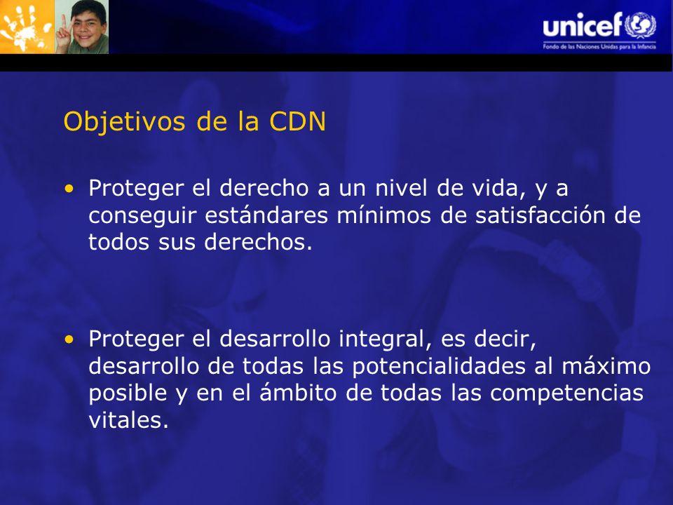 Objetivos de la CDN Proteger el derecho a un nivel de vida, y a conseguir estándares mínimos de satisfacción de todos sus derechos.