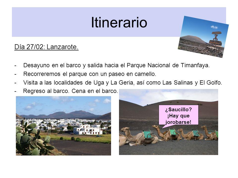 Itinerario Día 27/02: Lanzarote. -Desayuno en el barco y salida hacia el Parque Nacional de Timanfaya. -Recorreremos el parque con un paseo en camello
