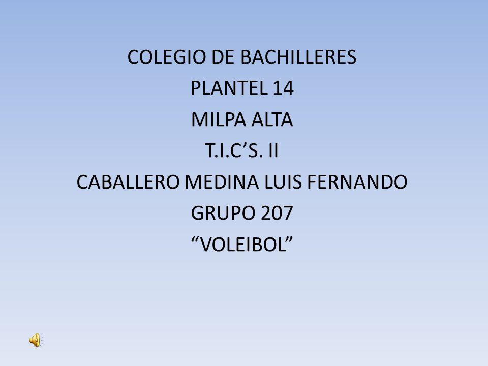 COLEGIO DE BACHILLERES PLANTEL 14 MILPA ALTA T.I.CS. II CABALLERO MEDINA LUIS FERNANDO GRUPO 207 VOLEIBOL