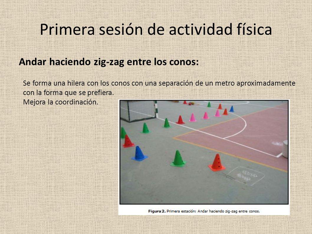 Primera sesión de actividad física Andar haciendo zig-zag entre los conos: Se forma una hilera con los conos con una separación de un metro aproximadamente con la forma que se prefiera.