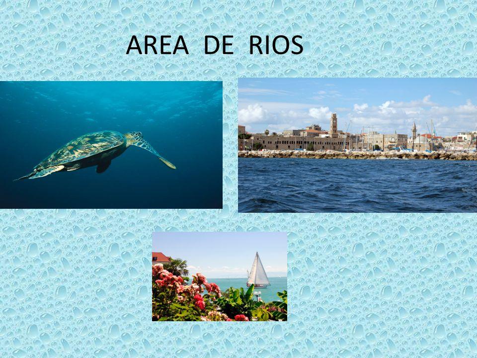 AREA DE RIOS