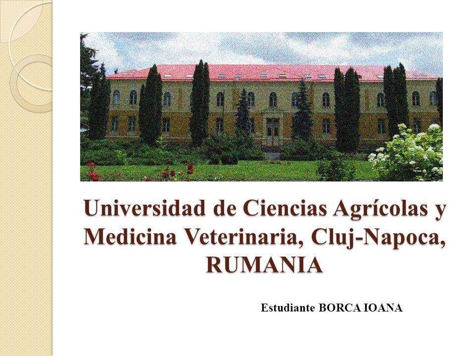 Universidad de Ciencias Agrícolas y Medicina Veterinaria, Cluj-Napoca, RUMANIA Estudiante BORCA IOANA