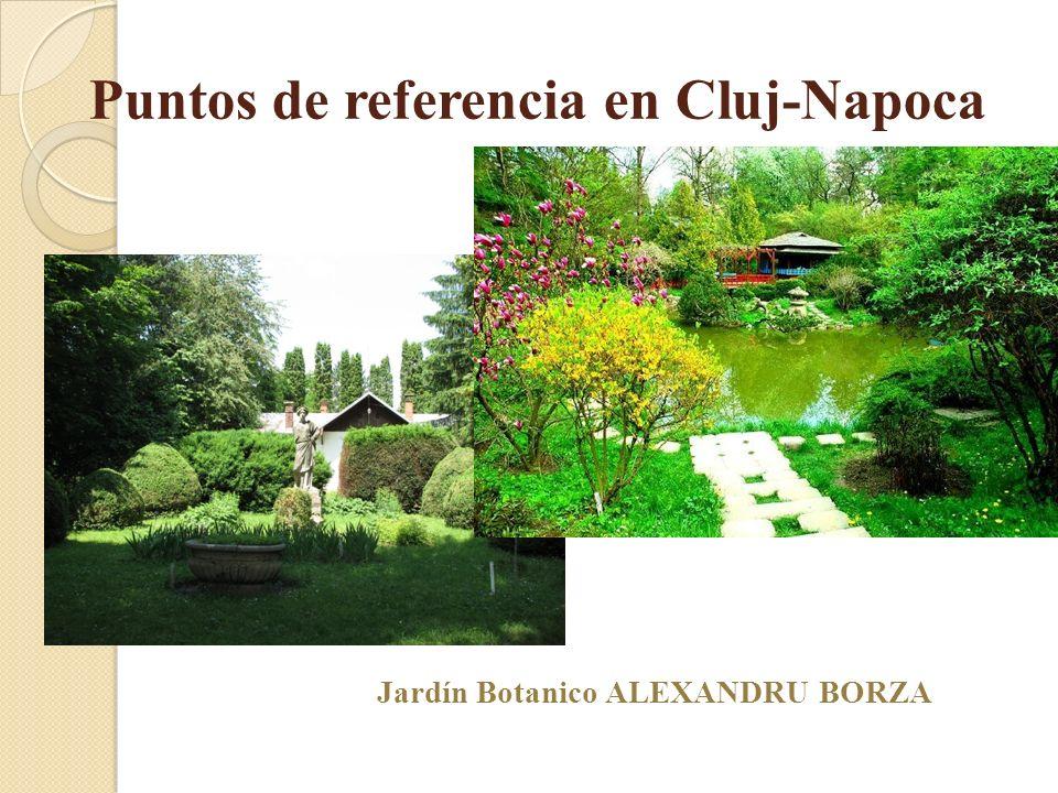 Puntos de referencia en Cluj-Napoca Jardín Botanico ALEXANDRU BORZA