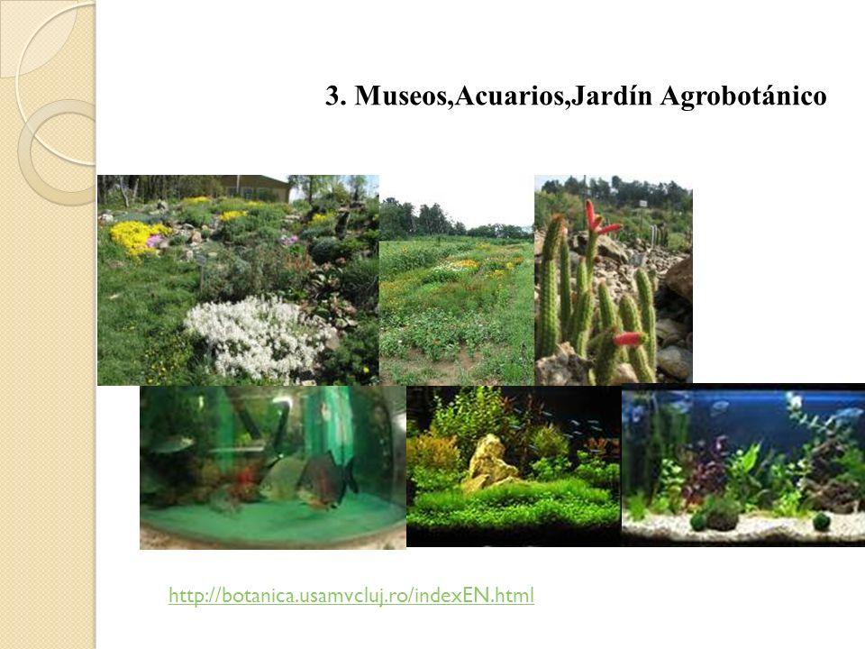 3. Museos,Acuarios,Jardín Agrobotánico http://botanica.usamvcluj.ro/indexEN.html