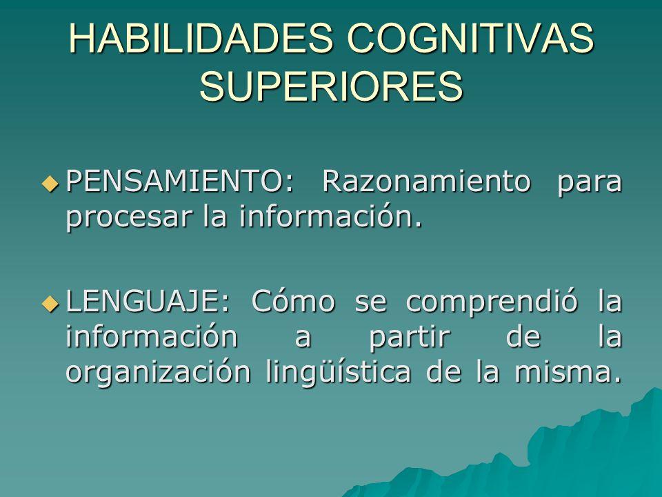 HABILIDADES COGNITIVAS SUPERIORES PENSAMIENTO: Razonamiento para procesar la información. PENSAMIENTO: Razonamiento para procesar la información. LENG