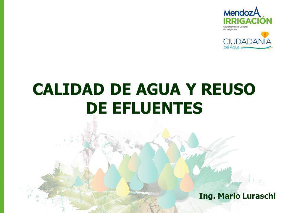 Ing. Mario Luraschi CALIDAD DE AGUA Y REUSO DE EFLUENTES