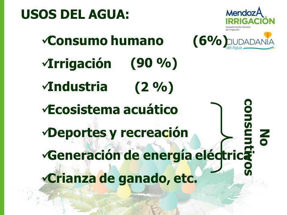 USOS DEL AGUA: Consumo humano (6%) Irrigación Industria Ecosistema acuático Deportes y recreación Generación de energía eléctrica Crianza de ganado, e