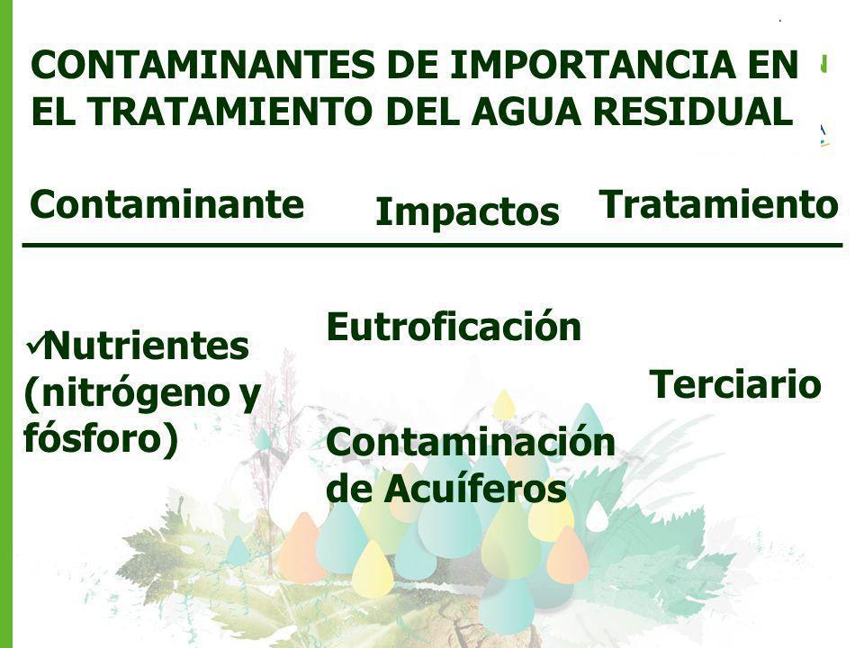 Contaminante CONTAMINANTES DE IMPORTANCIA EN EL TRATAMIENTO DEL AGUA RESIDUAL Impactos Nutrientes (nitrógeno y fósforo) Eutroficación Contaminación de